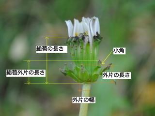 keisoku10111333s.jpg