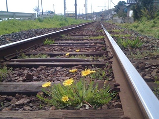 rail10040688.jpg
